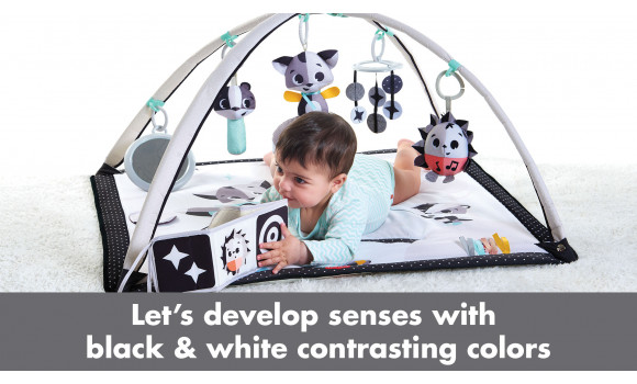 Magical Tales  Black and White Baby Gymini