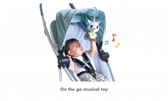 Polar Wonders Rob Musical Toy