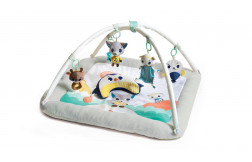 Polar Wonders™ Plush Gymini®