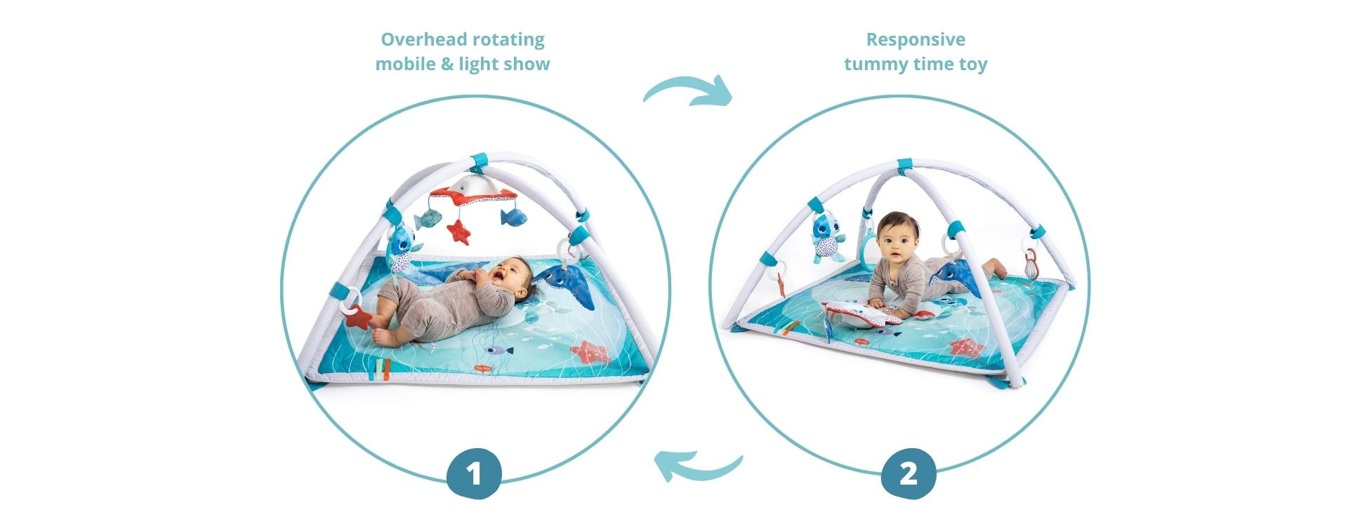2-in-1 enchanting starfish mobile with advanced features that converts into an engaging tummy time tapping toy