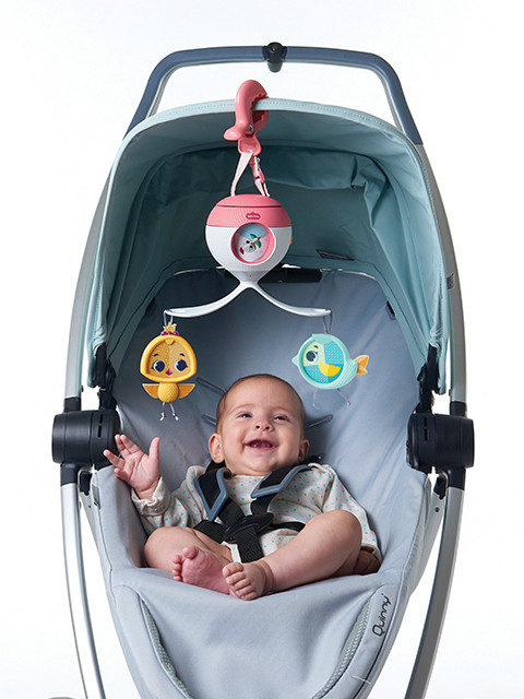2 in 1 On - the - Go Take Along Mobile