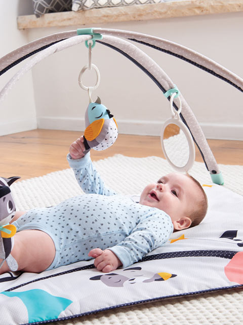 Stimulating and interactive toys entertain baby and support healthy development