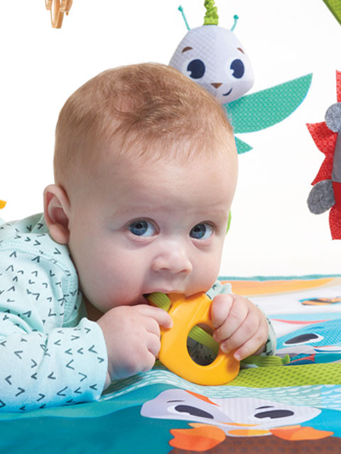Carrot shape teether and other attached toys stimulate the senses