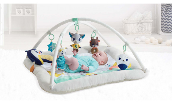 Polar Wonders Plush Gymini Baby Activity Gym