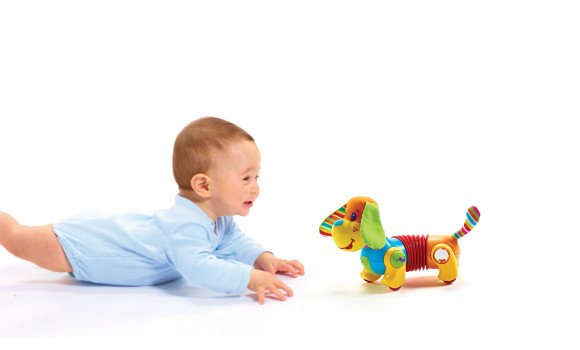 Follow Me Fred Baby Toy